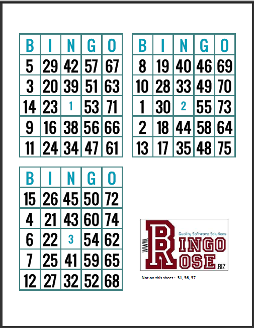 Free no repeat Bingo Card sheets